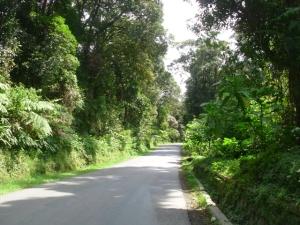 Jalanan dari terminal Jayagiri hingga kawah ratu