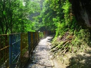 Jalan menuju Curug Omas