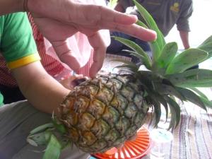 Pukulkan jari telunjuk ke daging nanas