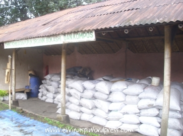 Bapak Agus mampu memproduksi pupuk kompos dan bokashi dari pertanian terpadu