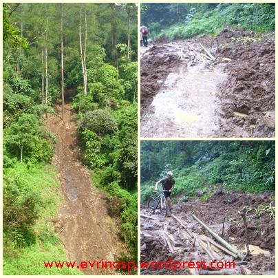 Bencana tanah longsor karena tanaman tidak mampu menahan debit air